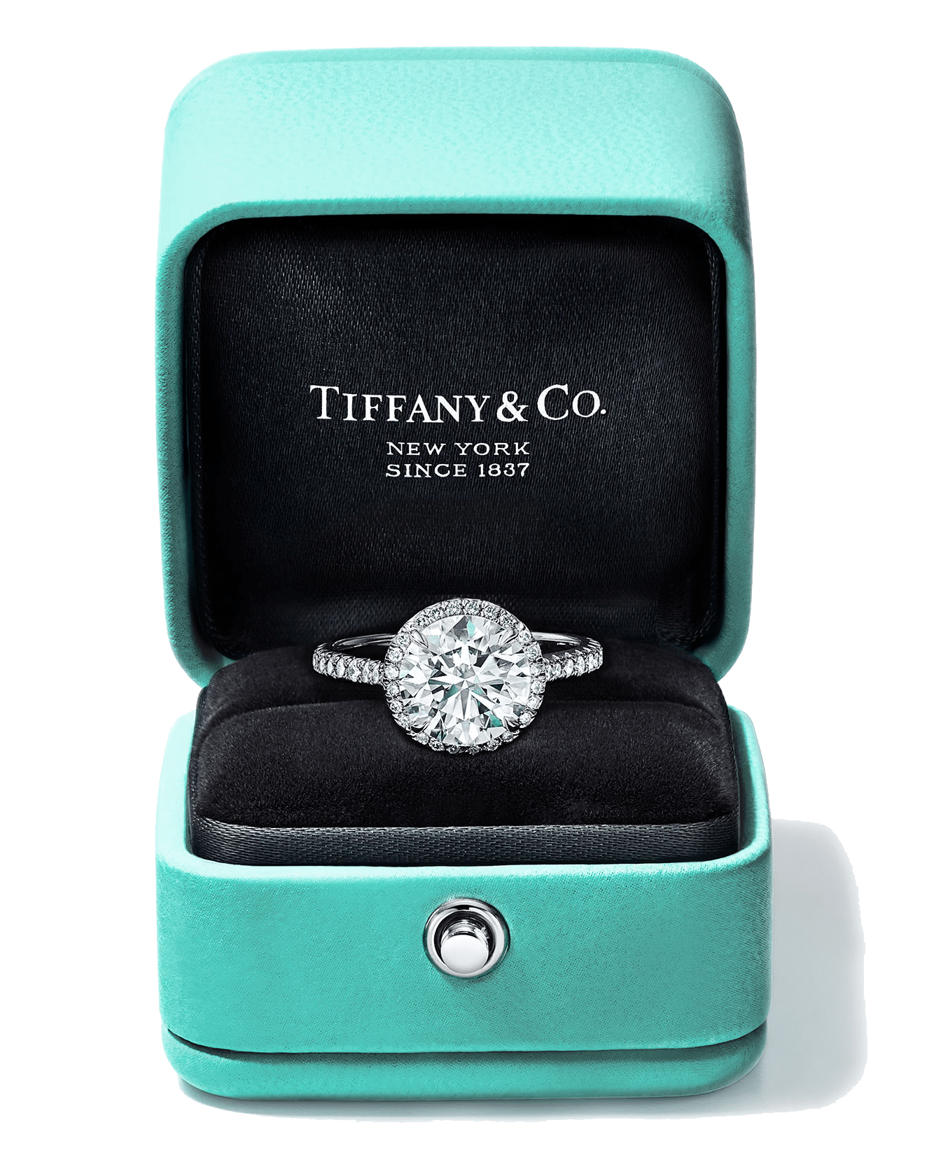 Tiffany & Co. X Daniel Tam