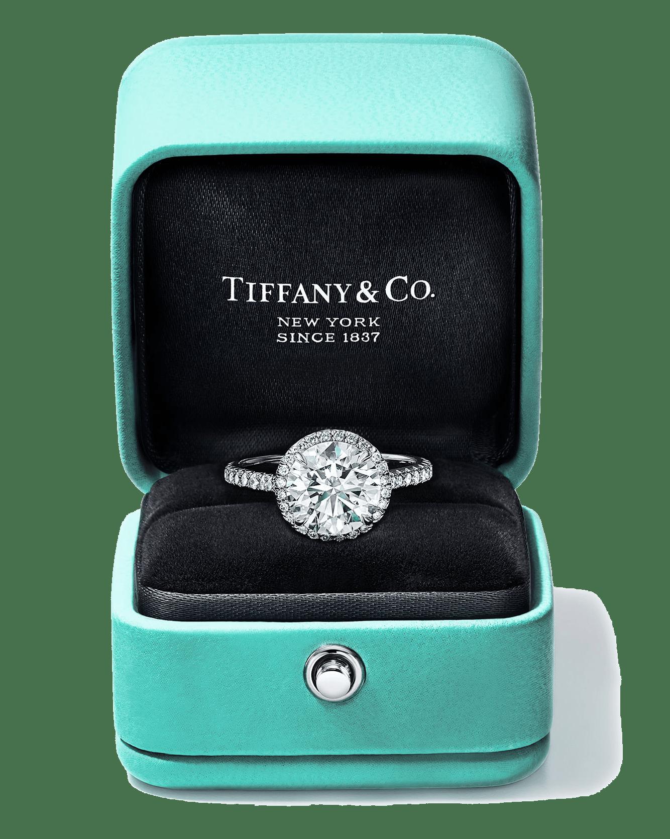 Tiffany & Co. X Daniel Tam