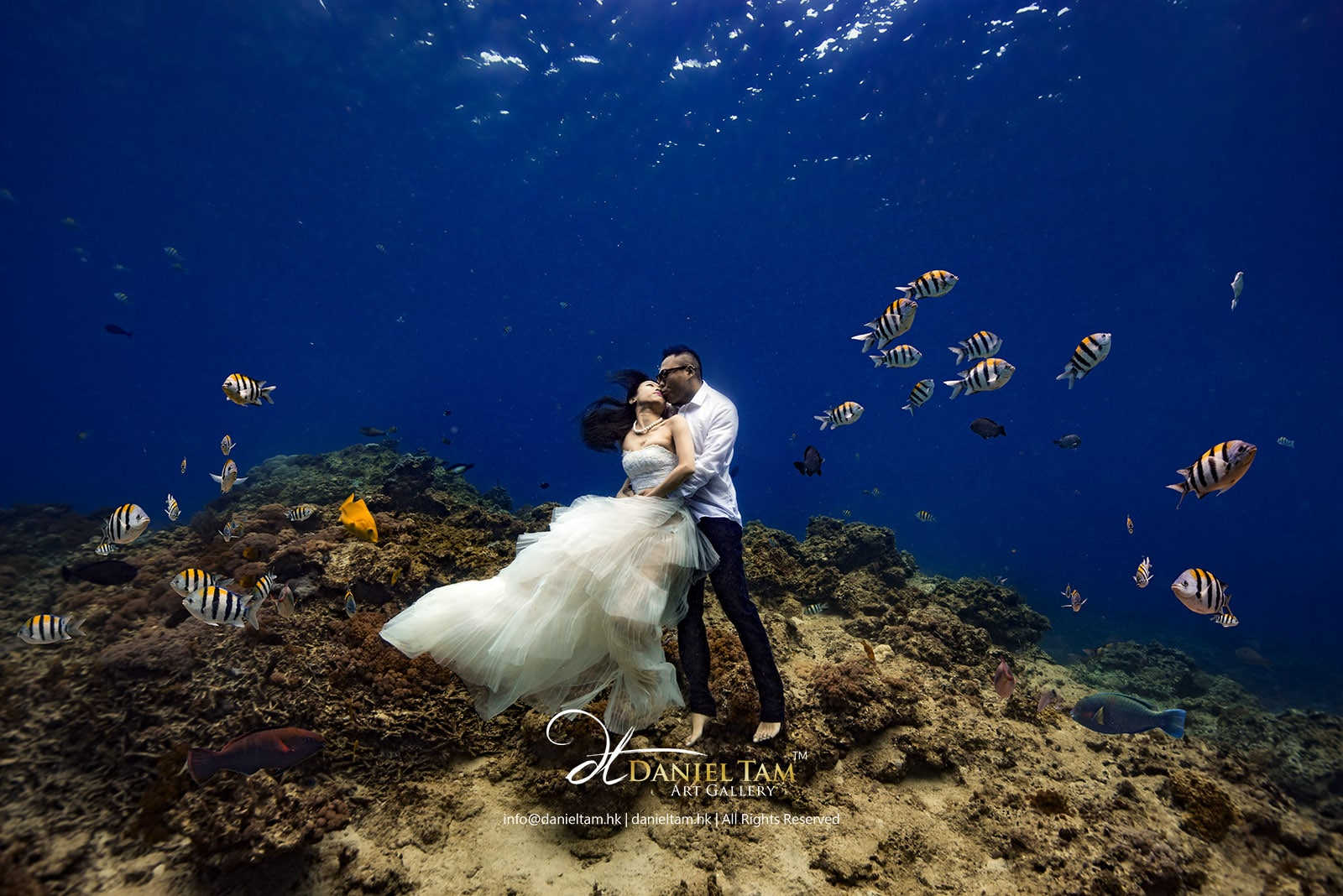 underwater pre wedding kanas christopher daniel tam